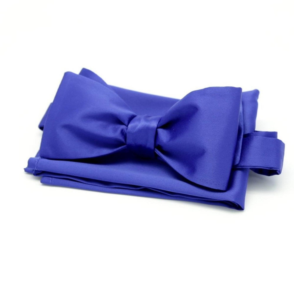 Men tied butterfly Willsoor 4487 in blue color