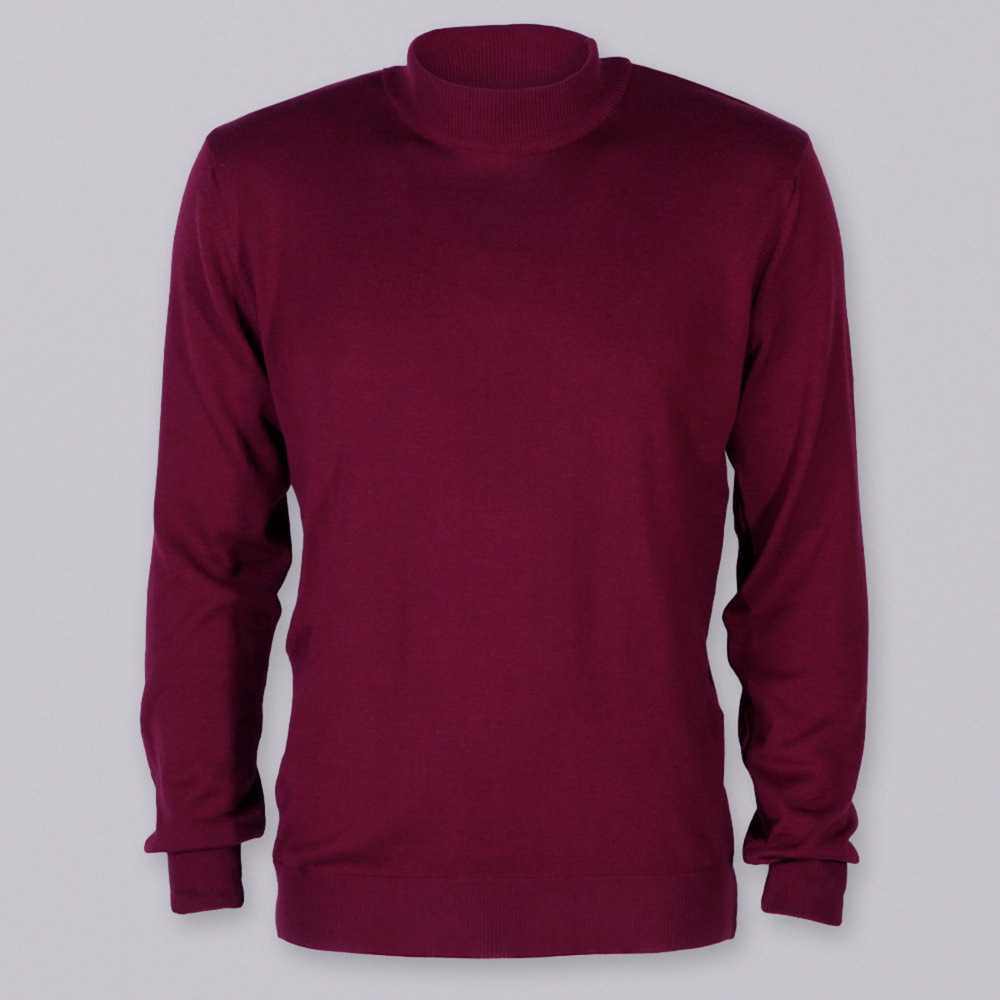 Men's claret turtleneck sweater Willsoor 8625