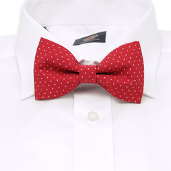 Men's red pre-tied bow tie with dots 10059, Willsoor