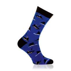 Men's socks with sharks print 10898, Willsoor