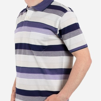 Men polo t-shirt with stripes Willsoor 5149