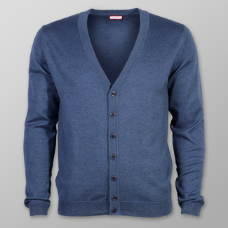 Men sweater type cardigan Willsoor (size to 5XL) 7880 in blue color