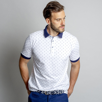 Men classic polo t-shirt Willsoor 8115 in white color